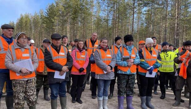 Segezha Group внедряет интенсивную модель лесопользования