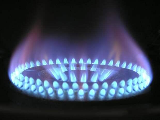 Владимир Путин дал поручение обеспечить бесплатное доведение газа до участков к 2023 году