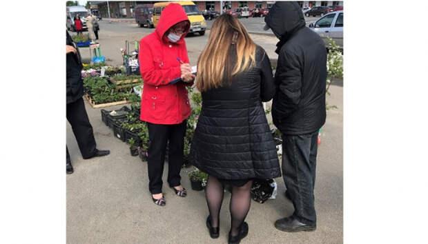 Нелегальных продавцов рассады «закрыли» в Петрозаводске