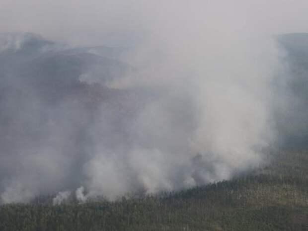 Лесопожарная обстановка остаётся напряжённой в некоторых районах Забайкалья