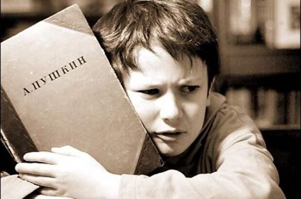 Дурачкам, подонкам и прочим, обвиняющим школу и учителей литературы