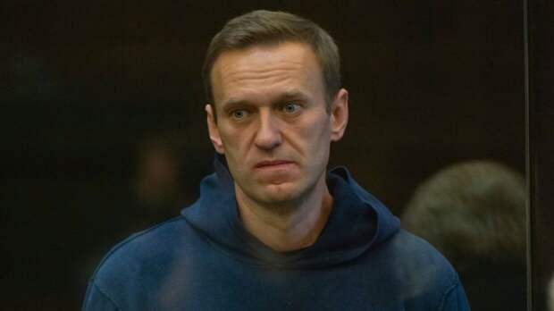 Депутат Госдумы назвал условия для возвращения беглых соратников Навального в РФ