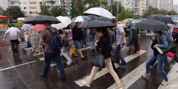 Серьезных последствий вчерашней непогоды в районе Сокол не выявлено