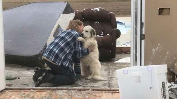 Хозяйка обнимала собаку, плакала и извинялась перед ней. Питомица выжила после того, как торнадо разрушил дом
