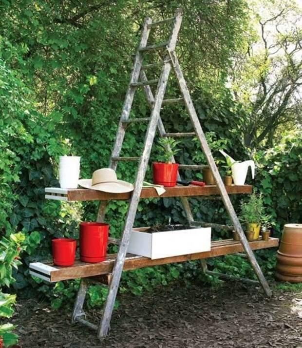 9. В огороде тоже вещь незаменимая дизайн, из старых вещей, лестница, своими руками, стремянка, фото