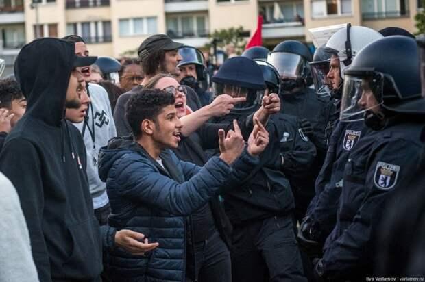 Европа и «мигранты»: сага о свинье в посудной лавке
