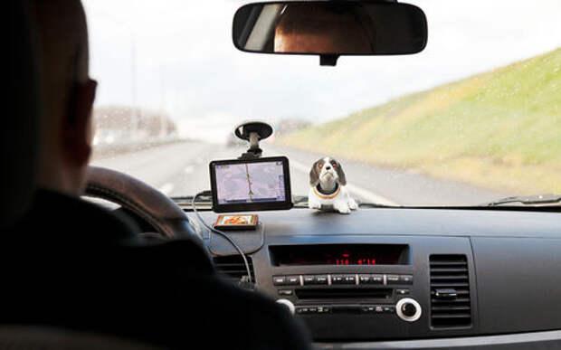 Россияне стали меньше гонять на дорогах. Особенно мужчины