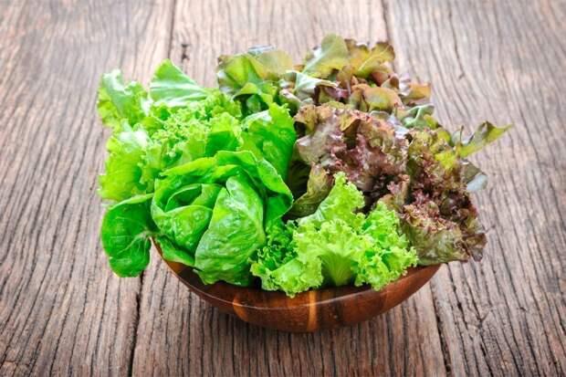 Листовой зелёный салат. Какие смеси бывают и что с ними делать