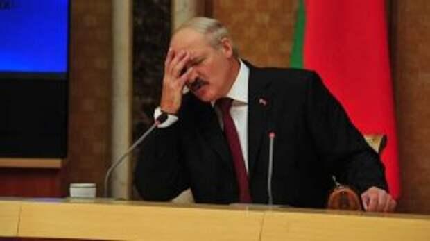 Журналист Дмитриев: Новым декретом Лукашенко заложит бомбу под свою власть и даст шанс оппозиции
