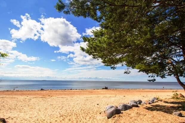 Неужели в Курортном районе построят высотки даже на Золотом пляже?