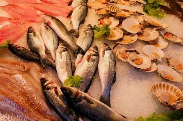 Жители Южной Кореи отказываются от морепродуктов из-за сброса воды с АЭС