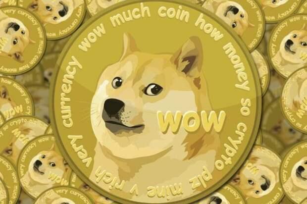 Что такое криптовалюта Dogecoin, и почему она может захватить мир?