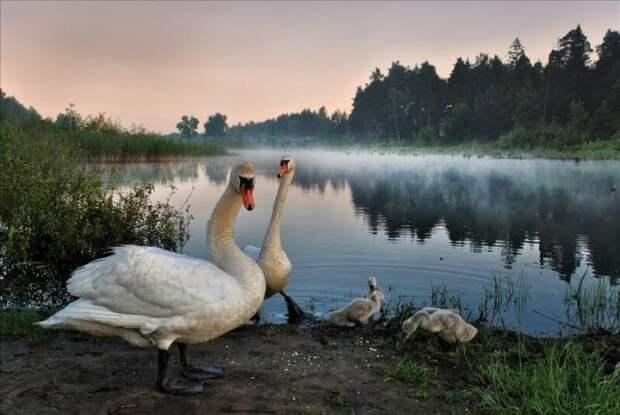 Живописные пейзажи фотографа Игоря Денисова (30 фото)