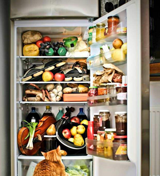 как хранить продукты в холодильнике