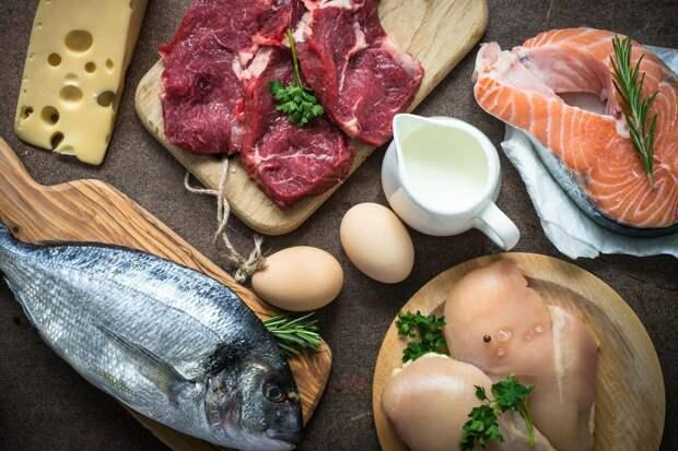 3 продукта с самым высоким содержанием белка – на заметку для правильной диеты