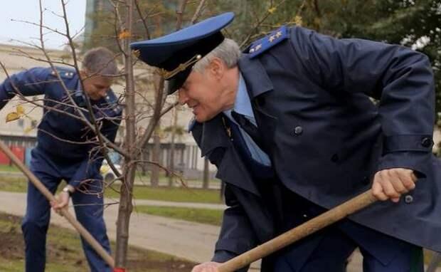 Работники прокуратуры Новосибирской области высадили саженцы лип в сквере возле Оперного театра
