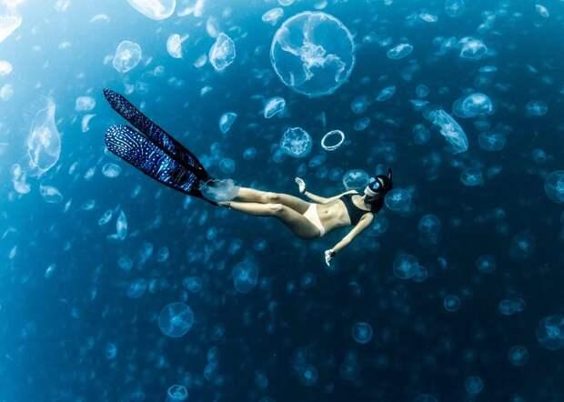 Прогулки под водой: бесстрашные фридайверы вокружении тысяч медуз