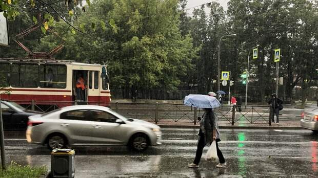 Синоптики предупредили жителей Ленинградской области о дождях 16 мая