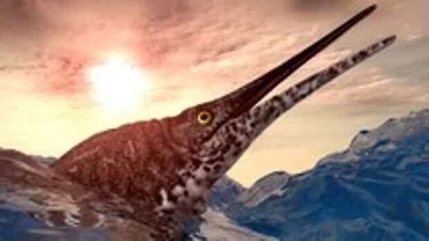 Русский ихтиозавр. Что за монстра нашёл ребёнок на Дальнем Востоке