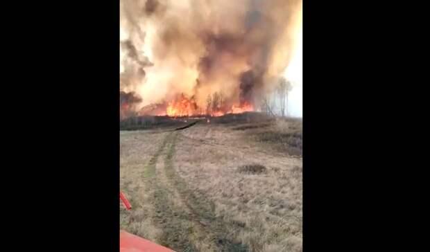 В Башкирии начался страшный пожар в лесу. Местные жители просят о помощи