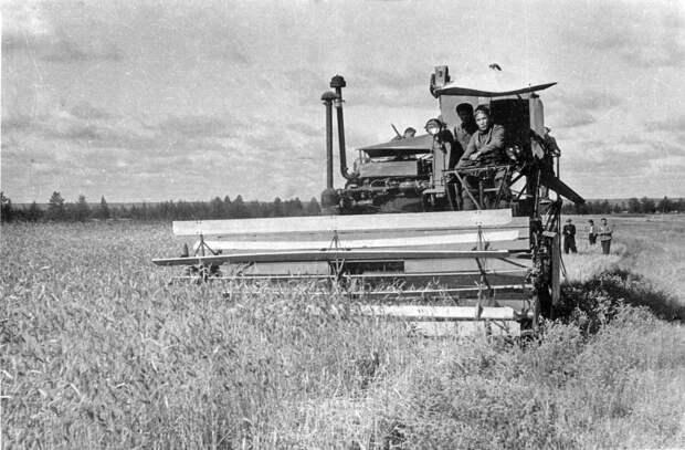 Почему СССР закупал зерно за рубежом