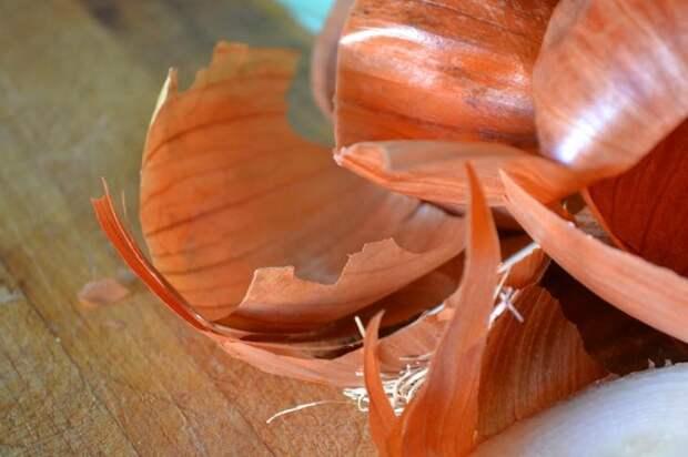 применение луковой шелухи, почему не стоит выбрасывать луковую шелуху