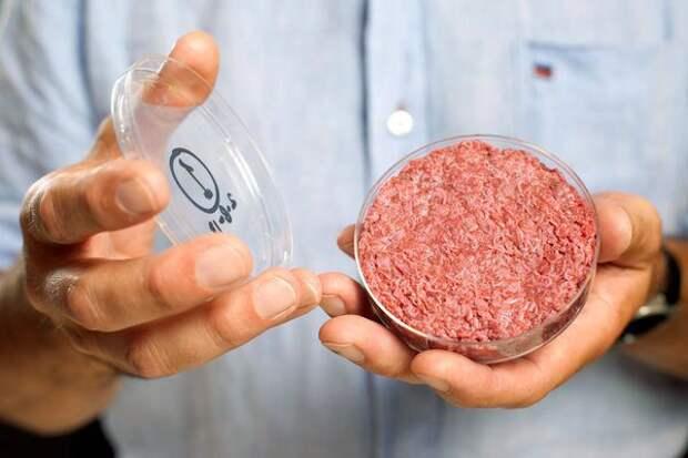 Технологии будущего и настоящего, которые могут спасти человечество от голода