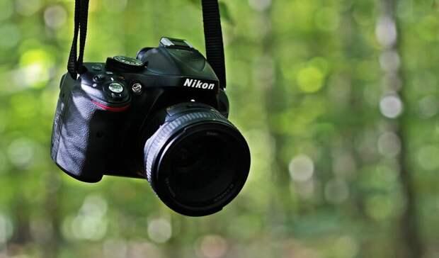 Фотоаппараты по118тыс руб закупят власти Ростовской области