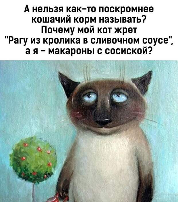 """Возможно, это изображение (текст «A нельзя как-то поскромнее кошачий корм называть? почему мой кот жрет """"раrу из кролика в сливочном coyce"""", a я -макароны с сосиской?»)"""