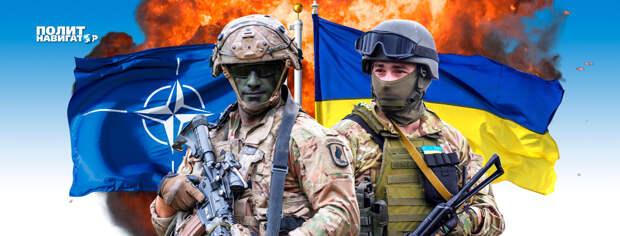 Ход конем: В Киеве хотят помириться с Россией, чтобы вступить в НАТО