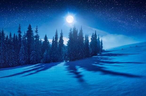 Лунный календарь садовода и огородника с 3 по 18 декабря