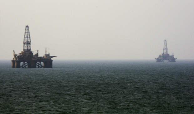 Тюлений нефтегазовый участок будет разыгран 24декабря
