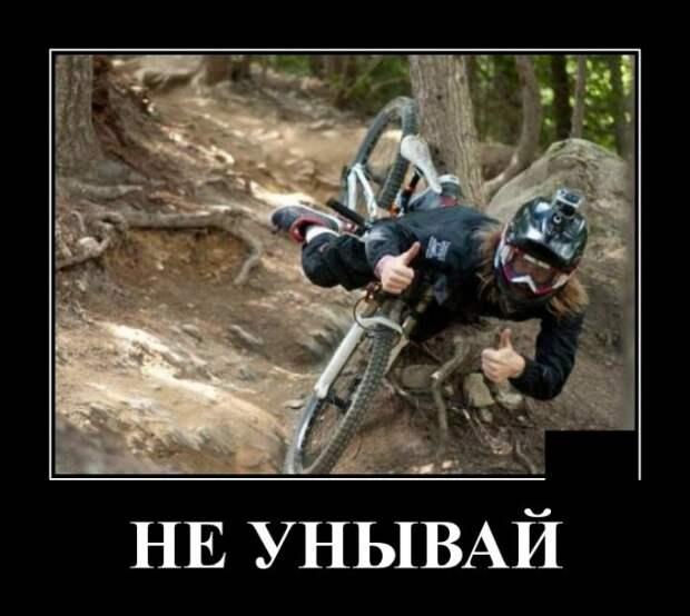 Демотиваторы про велосипедиста