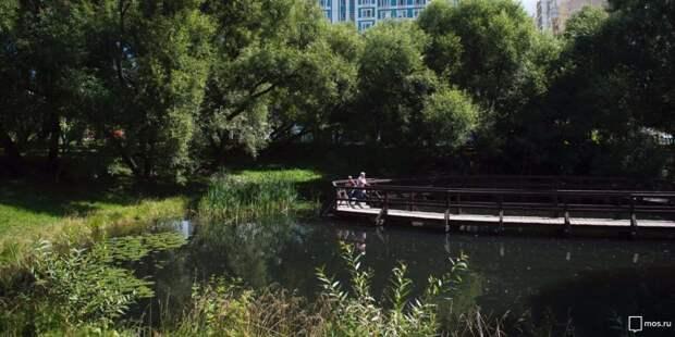 Под руководством гида пройдет бесплатная экскурсия по парку «Покровское-Стрешнево»