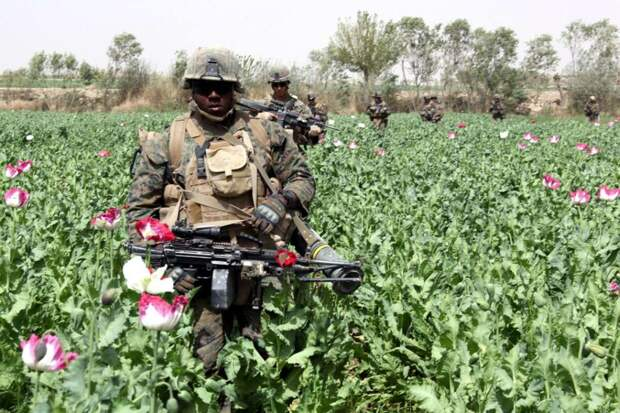 Американская оккупация, наркотики и «Талибан»*
