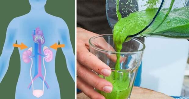 Одуванчик – лекарство фантастической лечебной силы!