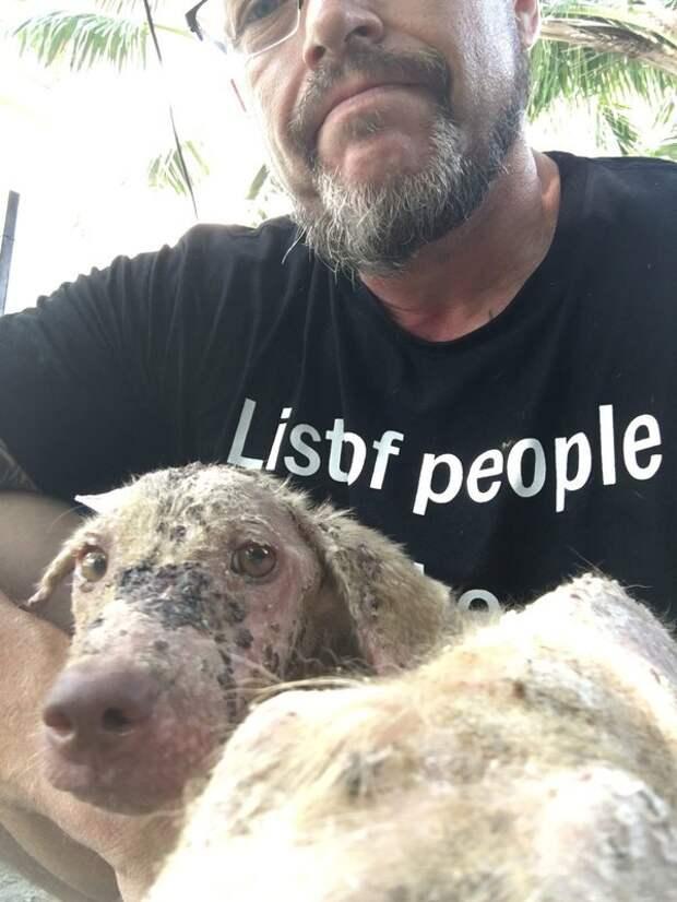 Он пообещал умирающему бездомному щенку, который кричал от боли, что спасет его...