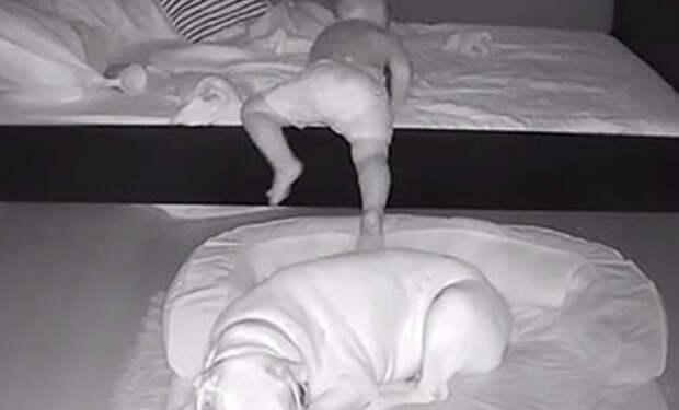 Ребенок по утрам просыпался на полу. Родители установили камеру и посмотрели, что происходит ночью