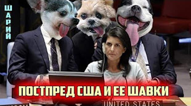 Драка в ООНе. Как новый Чуркин приручил постпреда США и ее шавок, которые пытались гавкать. Прикол!