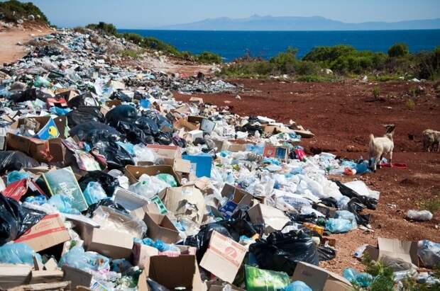 В ОАЭ построят заводы, перерабатывающие скопившиеся тонны мусора