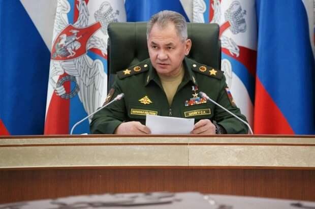 Шойгу рассказал о планах по развитию военного сотрудничества с Сербией