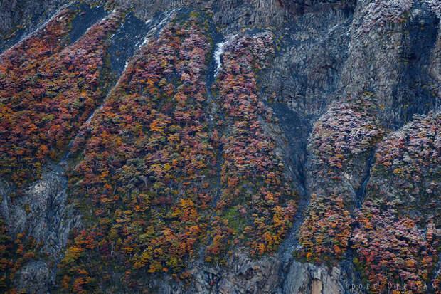 Патагония: богатство красок на краю земли