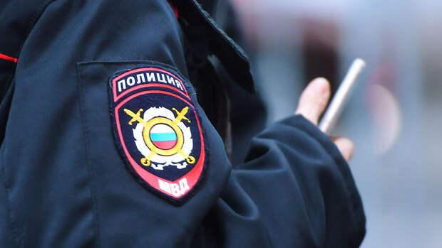 Полиция задержала девушку, которая без ведома матери увела ее дочь в Подмосковье