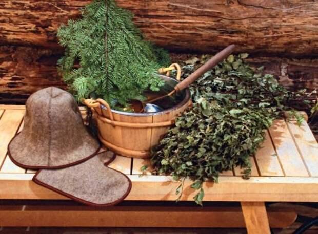 Когда заготавливать веники для бани: березовые, дубовые и другие