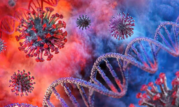 В ЮАР обнаружили новый тип коронавируса – он распространяется быстрее SARS-CoV-2