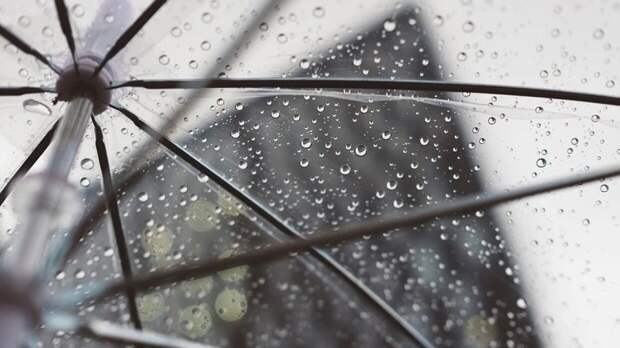 Дожди и грозы накроют Ленинградскую область в воскресенье