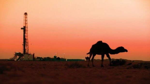 Wintershall Dea идет искать нефть игаз вЕгипте