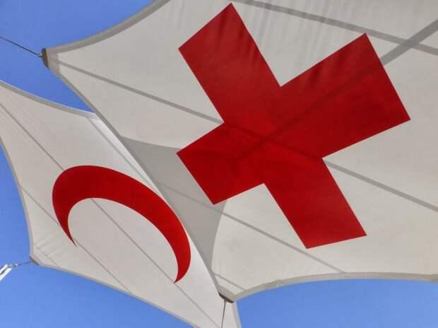 Всемирный День Красного Креста и Красного Полумесяца 8 мая 2021