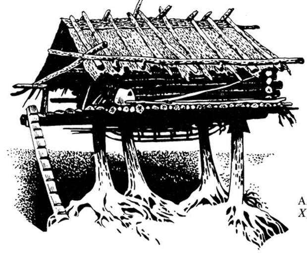 Амурская экспедиция. В гостях у «рыбьекожих»