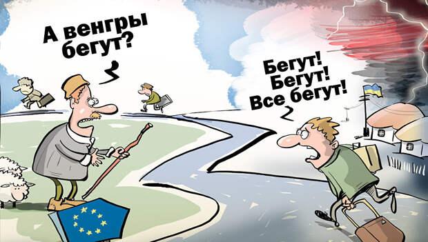 Киев взял курс на девенгеризацию Закарпатья